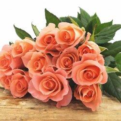 Rozes garās (1 zieds)